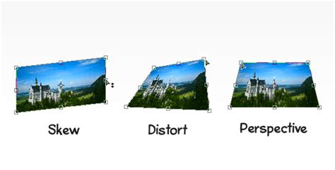 adobe photoshop - Guessing a 3D rotation's parameters