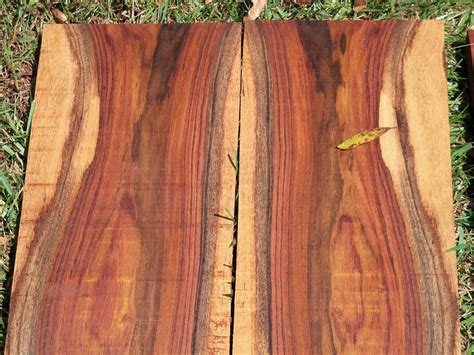 Destruction for Fun and Profit: Lost Rosewood and The