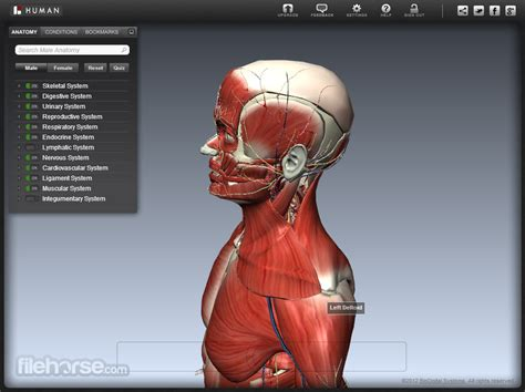 BioDigital Human - A better way to understand health and